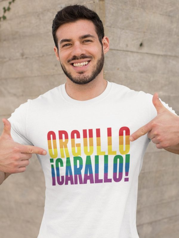 Camiseta chico orgullo carallo ocarallovintenove