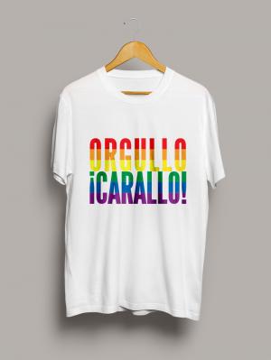 camiseta-orgullo-carallo-chico